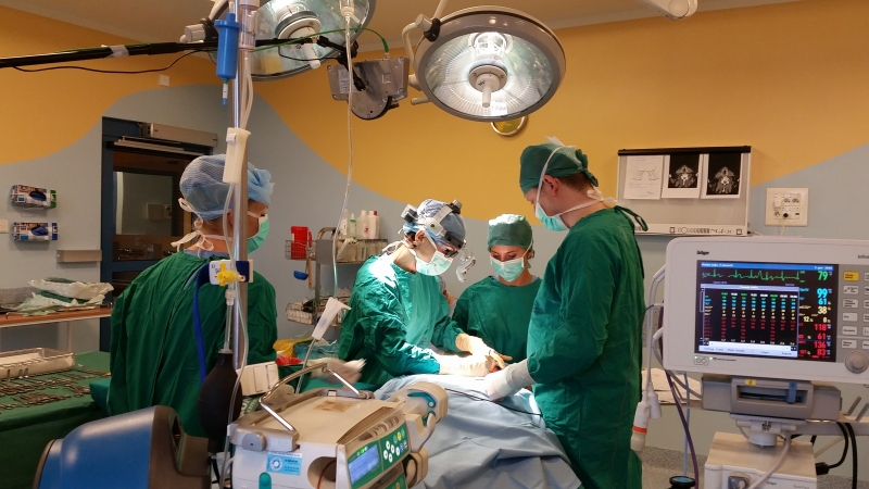 Chirurgia Laryngologiczna Live