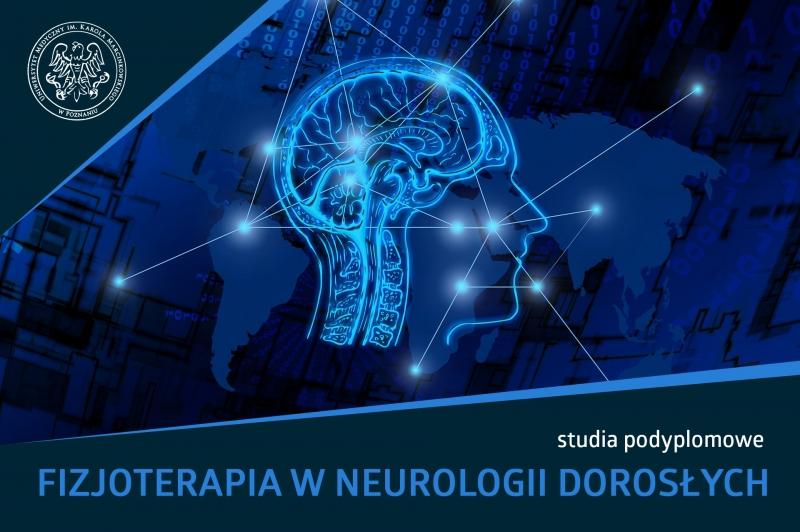 Baner reklamowy w kolorze granatowym. Na środku grafika ludzkiej głowy. Pod spodem napis: studia podyplomowe Fizjoterapia w Neurologii Dorosłych
