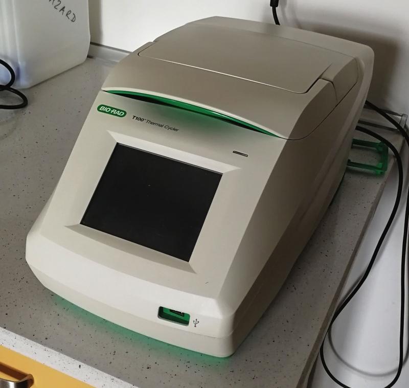 Termocykler Biorad T100