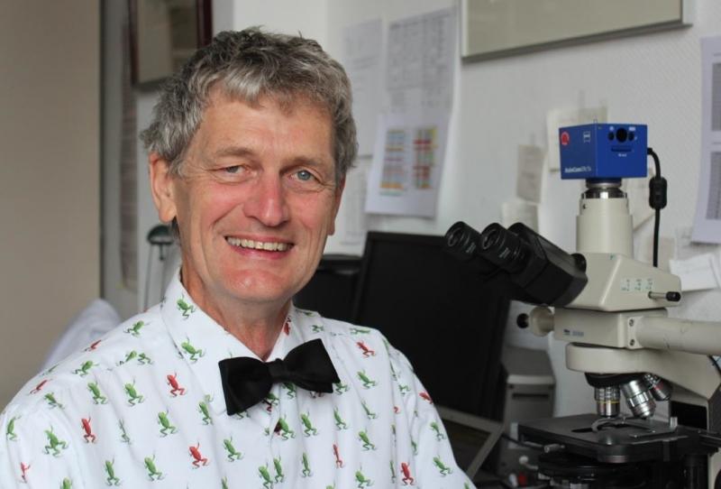 Profesor Martin Witt